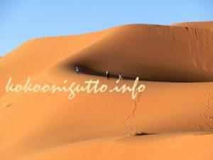 マラケシュ サハラ砂漠ツアー 2日目15