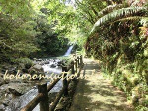 奄美大島 マテリアの滝4