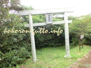 奄美大島 蒲生崎2