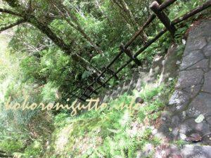 奄美大島 マテリアの滝3