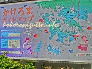 奄美大島から加計呂麻島4