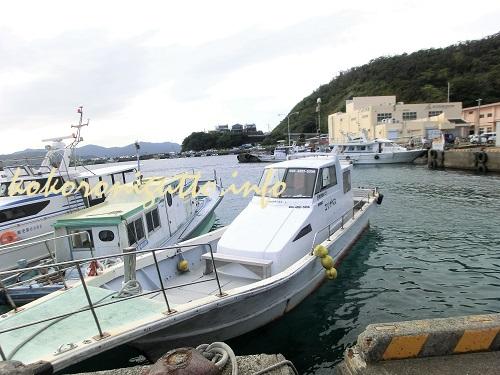 加計呂麻島に行こうとしたらフェリーがドックで車で行けなかった!どうする?