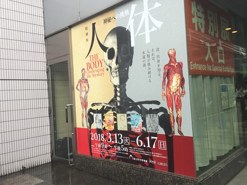 上野の【人体~神秘への挑戦~】平日で雨でも混んでた!