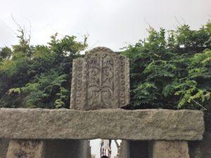 江之浦測候所 雨 ブログ 生命の樹2